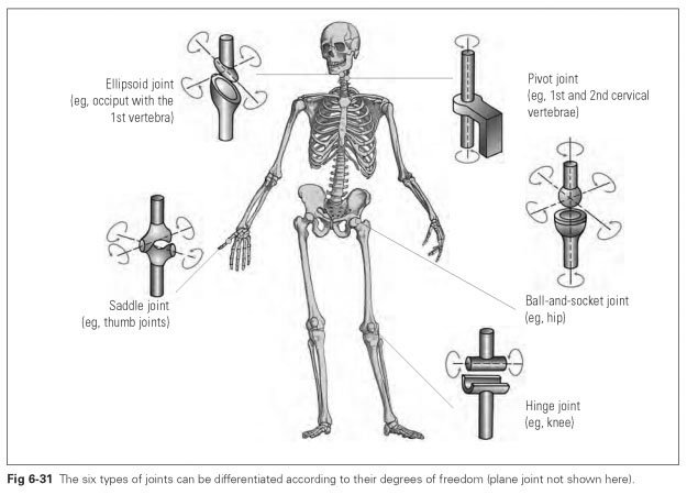 Types Of Joints Dental Technology How To Tips