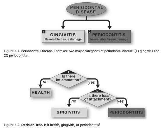 Categories of periodontal disease