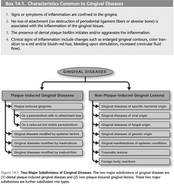 Classification of gingival diseases